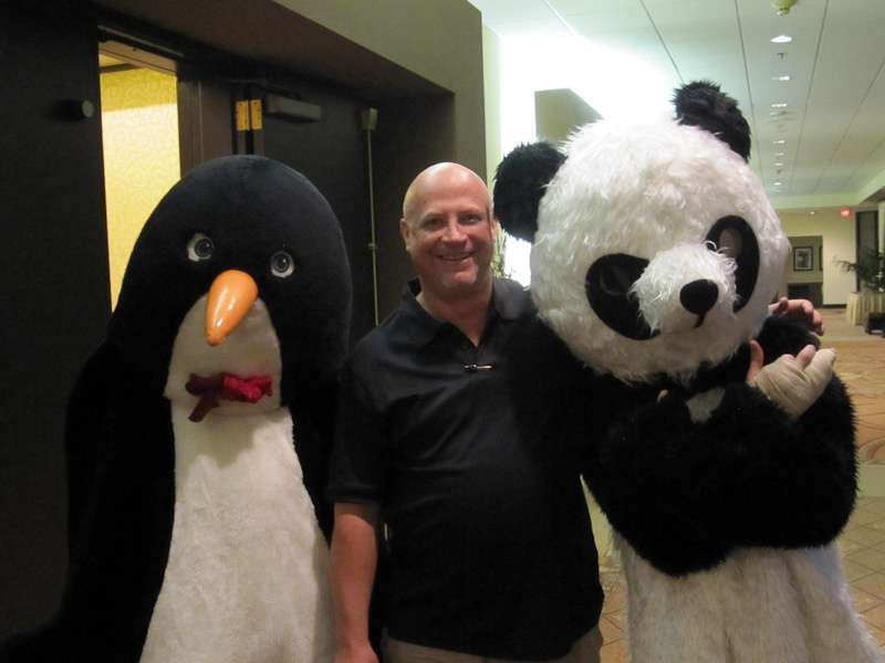 Tips To Recover Your Brand From Panda and Penguin Updates